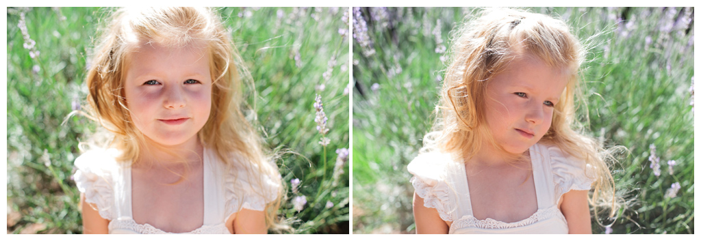 Blog-Collage-1356774729933